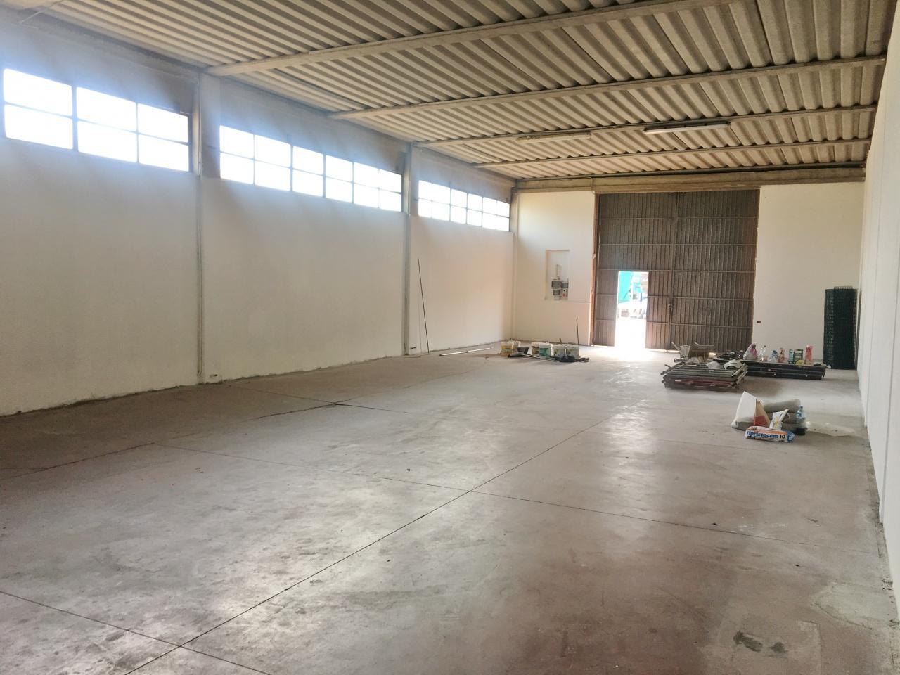 affitto capannone camaiore   1300 euro  2 locali  250 mq