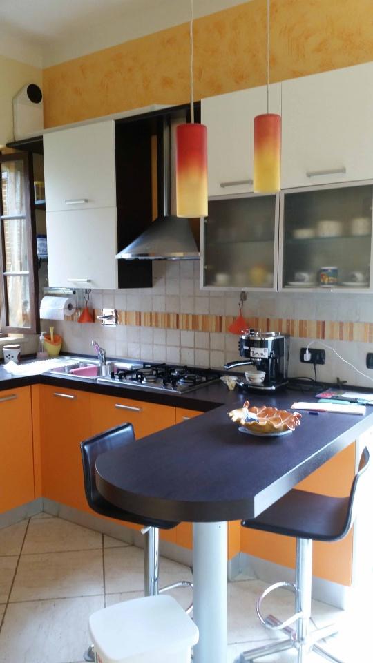 Attività commerciale in ottime condizioni arredato in affitto Rif. 9550612