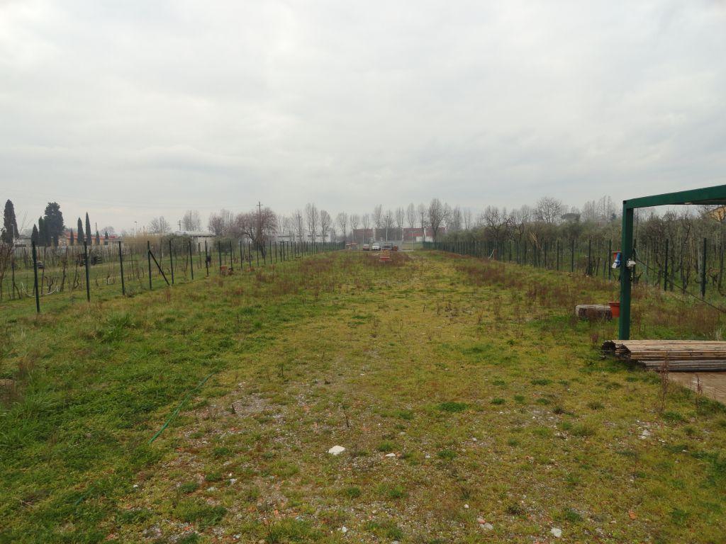 Terreno Commerciale in buone condizioni in affitto Rif. 10386206