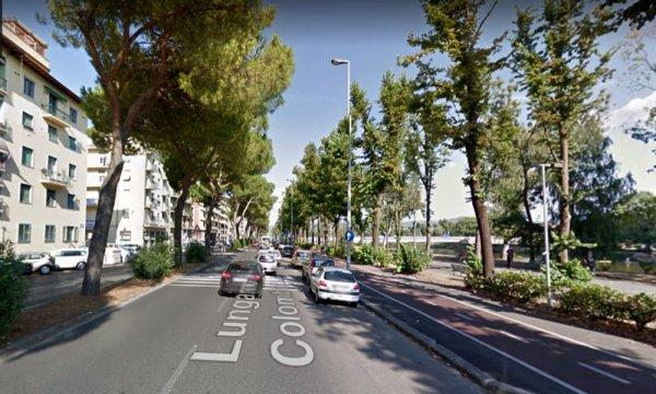Appartamento in affitto Rif. 11254390