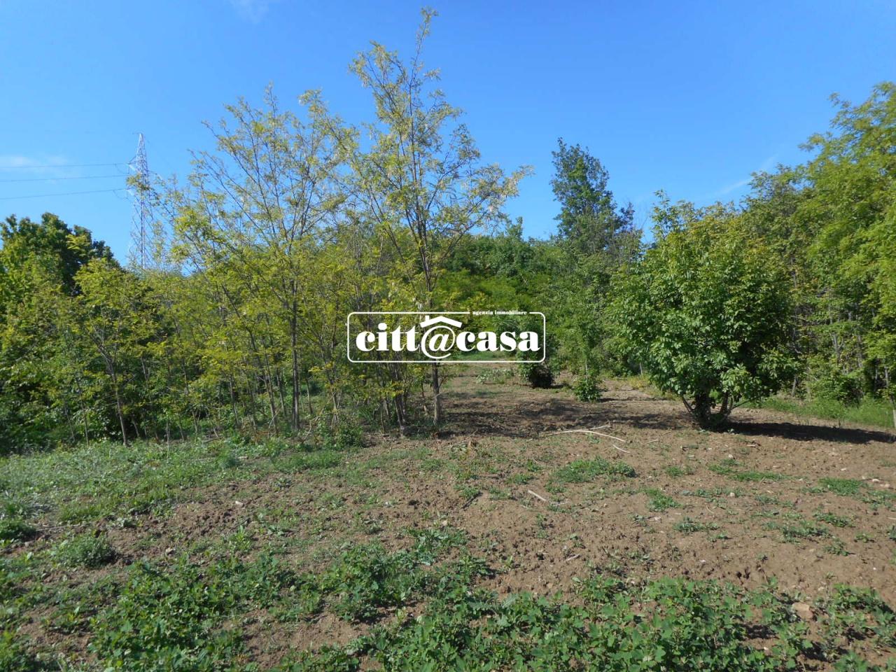 Terreno Agricolo in vendita a Cavagnolo, 9999 locali, prezzo € 13.500 | CambioCasa.it