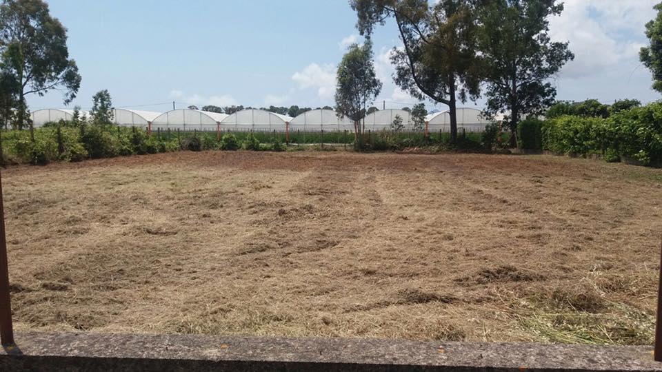 Terreno Agricolo in Vendita a Terracina