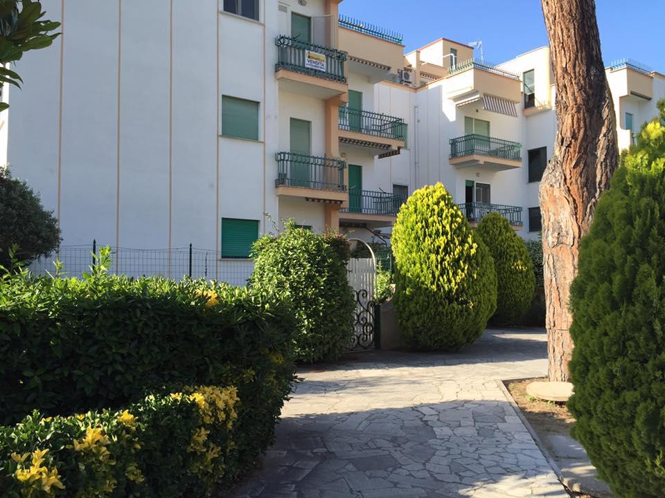 Bilocale Terracina Via Pontina 04019 1