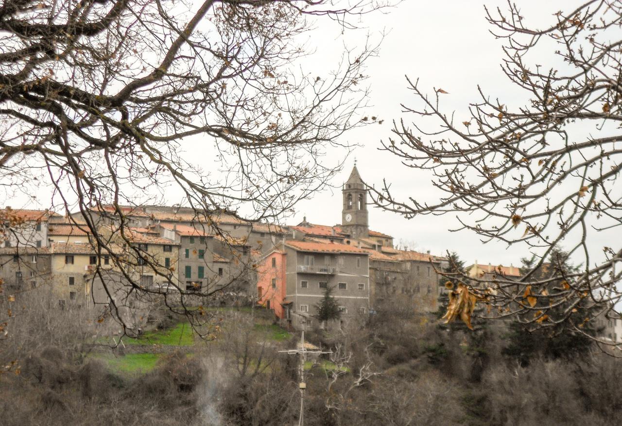 Appartamento in vendita a Cinigiano, 2 locali, prezzo € 60 | PortaleAgenzieImmobiliari.it