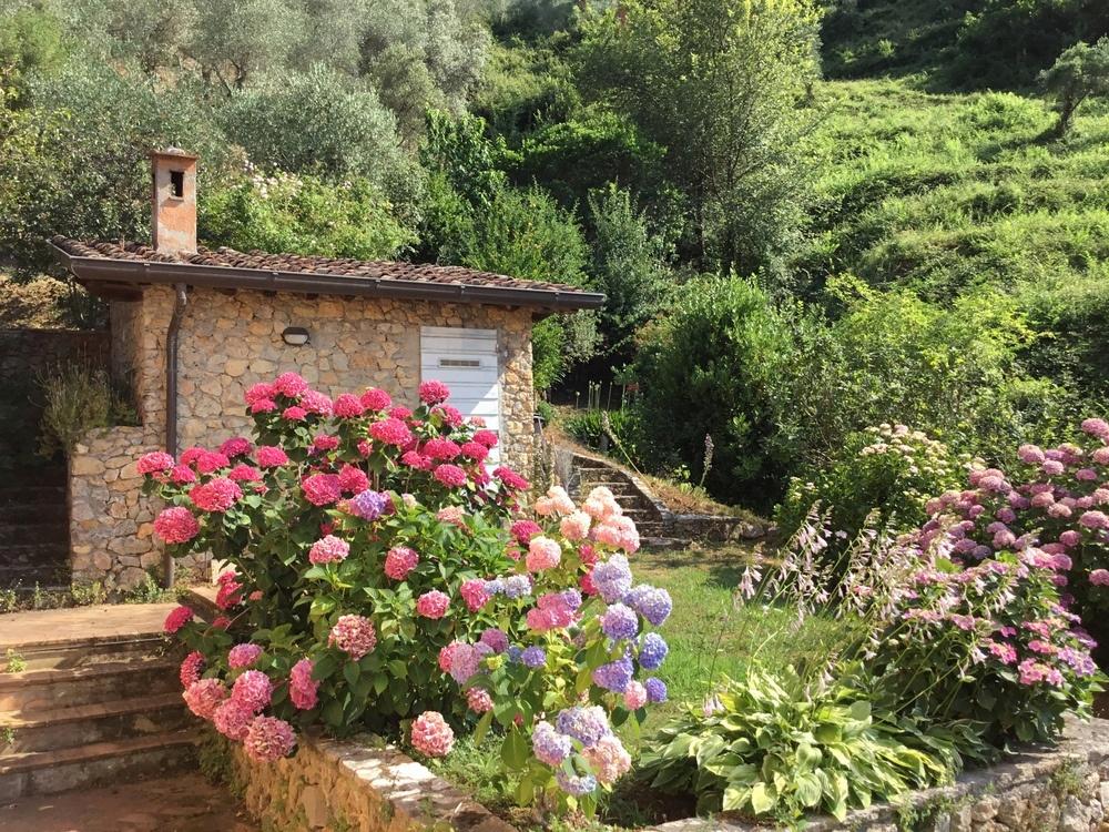 Rustico / Casale in vendita a Camaiore, 13 locali, Trattative riservate | CambioCasa.it