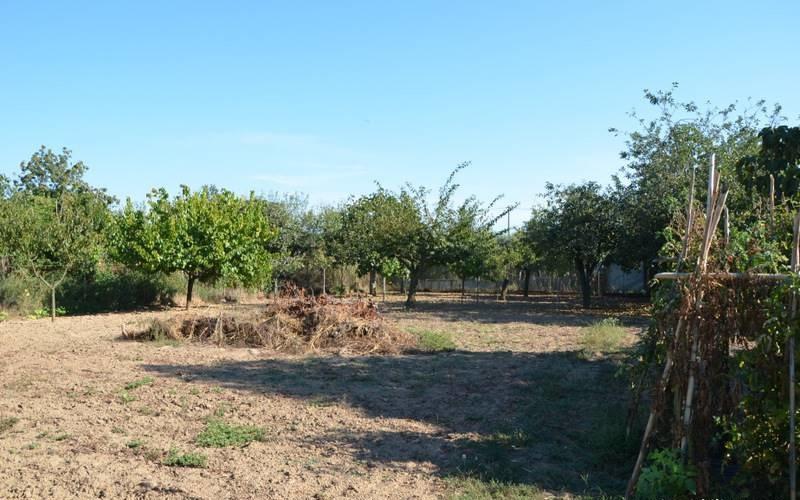 vendesi terreno di circa 1000 mq nella zona del Capannino.<br /> Richiesta €20.000
