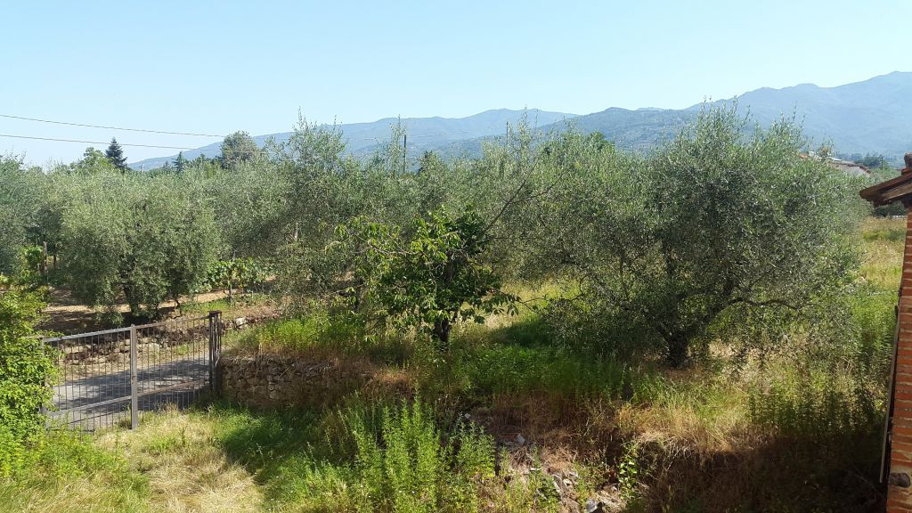 Rustico / Casale in Vendita a Castelfranco Piandiscò