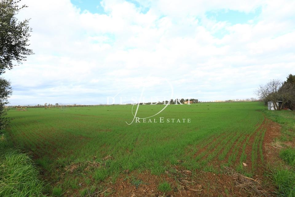 Terreno Commerciale in vendita Rif. 6381428