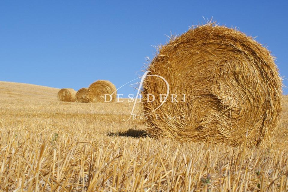 Terreno Commerciale in ottime condizioni in vendita Rif. 7501005