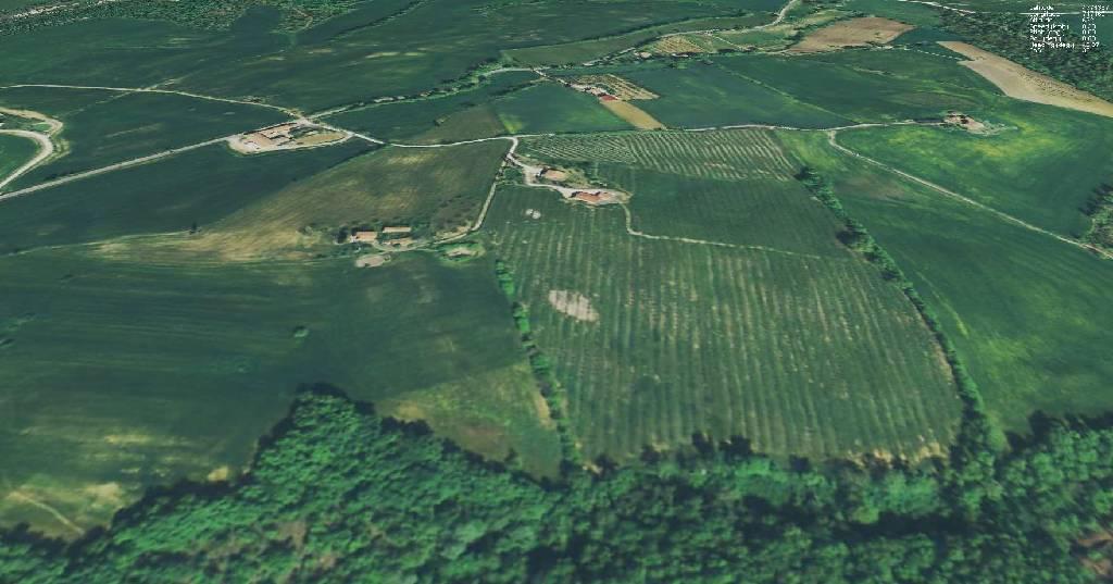 Azienda Agricola in vendita a Pienza, 18 locali, zona Località: POD.FRERA, prezzo € 870.000 | Cambio Casa.it