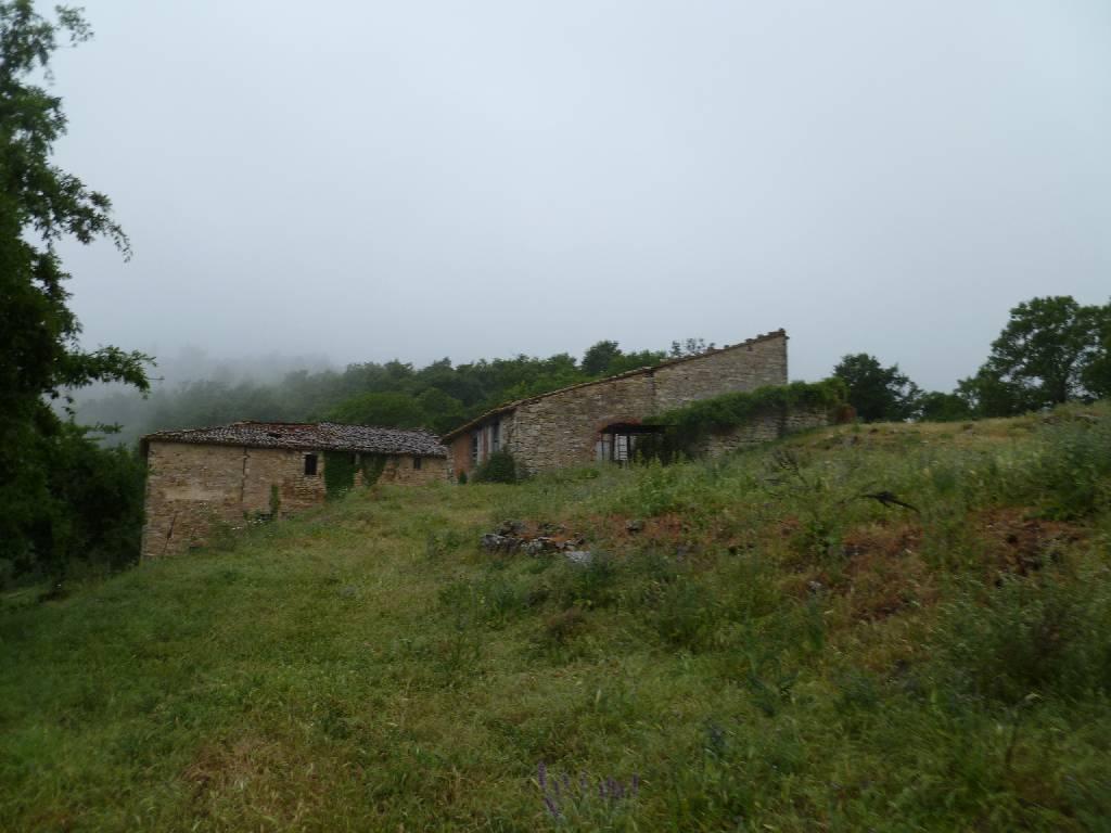 Azienda Agricola in vendita a Piegaro, 50 locali, prezzo € 2.000.000 | Cambio Casa.it