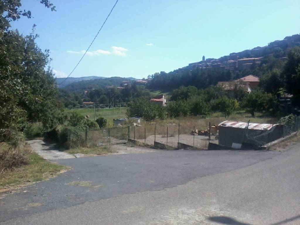 Terreno Agricolo in vendita a Arcidosso, 9999 locali, zona Località: GENERICA, prezzo € 40.000 | Cambio Casa.it
