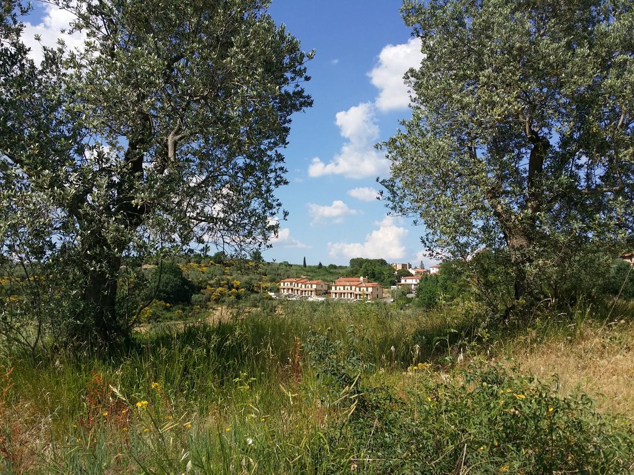 Villetta a schiera in vendita Rif. 7089986