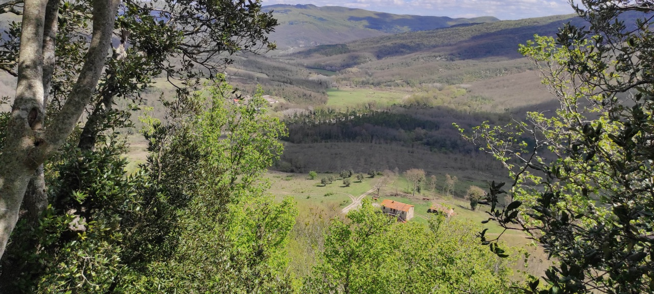 Azienda Agricola ACQUAPENDENTE AGR 2151