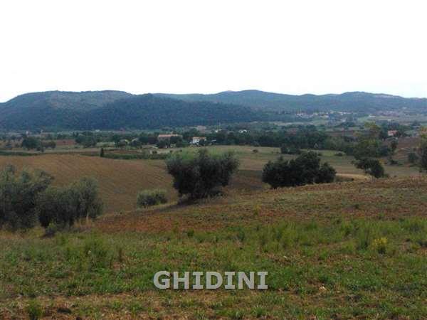 Rustico / Casale in Vendita a Magliano in Toscana
