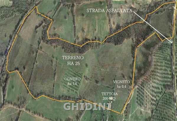 Terreno Agricolo in Vendita a Civitella Paganico