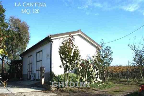 Azienda Agricola in vendita a Roccastrada, 10 locali, prezzo € 900.000   CambioCasa.it