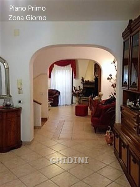 Laboratorio in vendita a Grosseto, 7 locali, prezzo € 420.000   CambioCasa.it