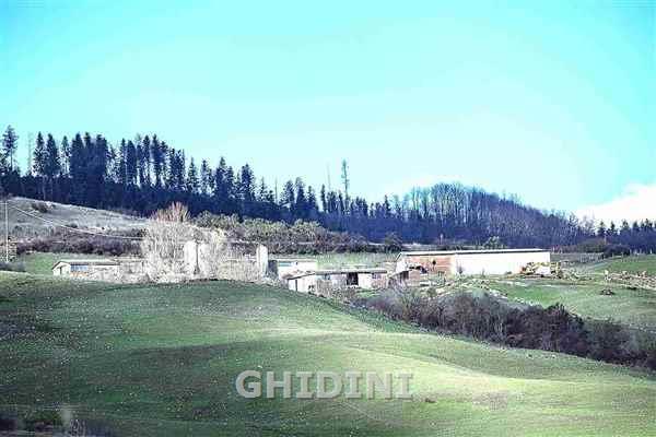 Azienda Agricola in Vendita a Santa Fiora