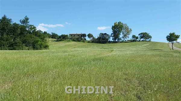 Azienda Agricola in vendita a Gavorrano, 10 locali, prezzo € 1.200.000   CambioCasa.it