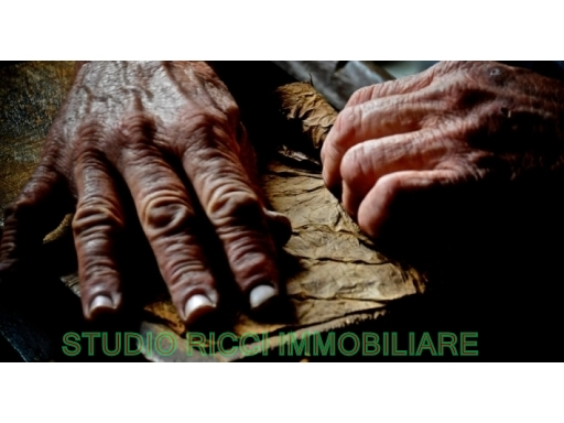 Attività / Licenza in vendita a Scandicci, 9999 locali, Trattative riservate | CambioCasa.it