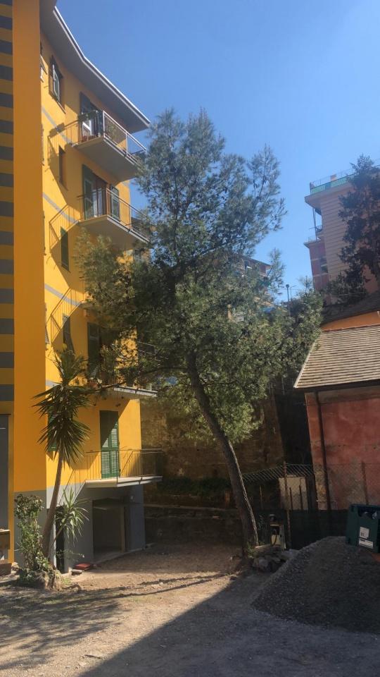 Appartamento, VIA ROMA, Vendita - Recco (GE)