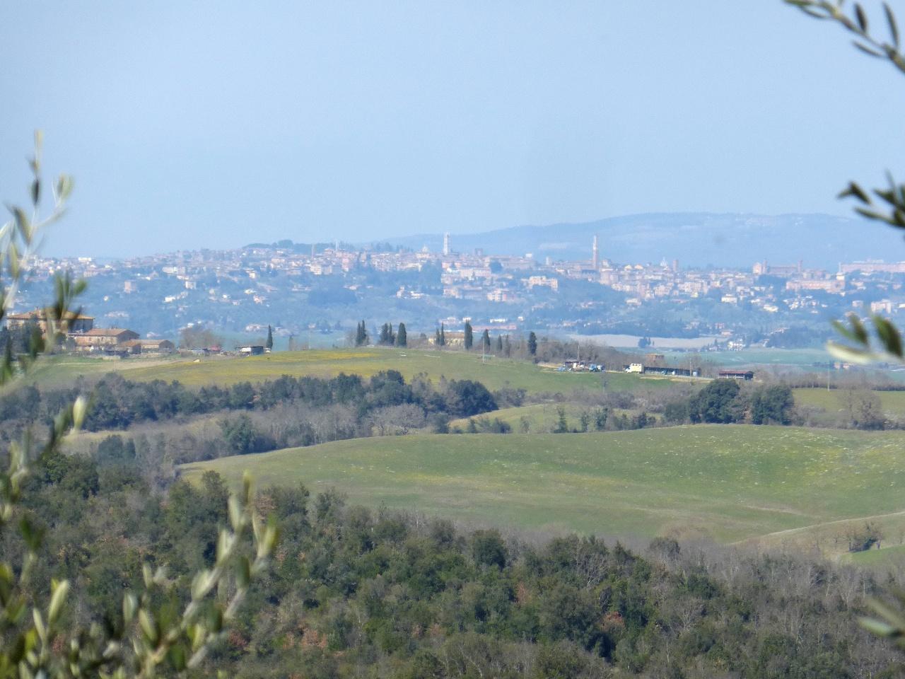 Terreno Edificabile Comm.le/Ind.le in vendita a Murlo, 9999 locali, prezzo € 155.000 | CambioCasa.it