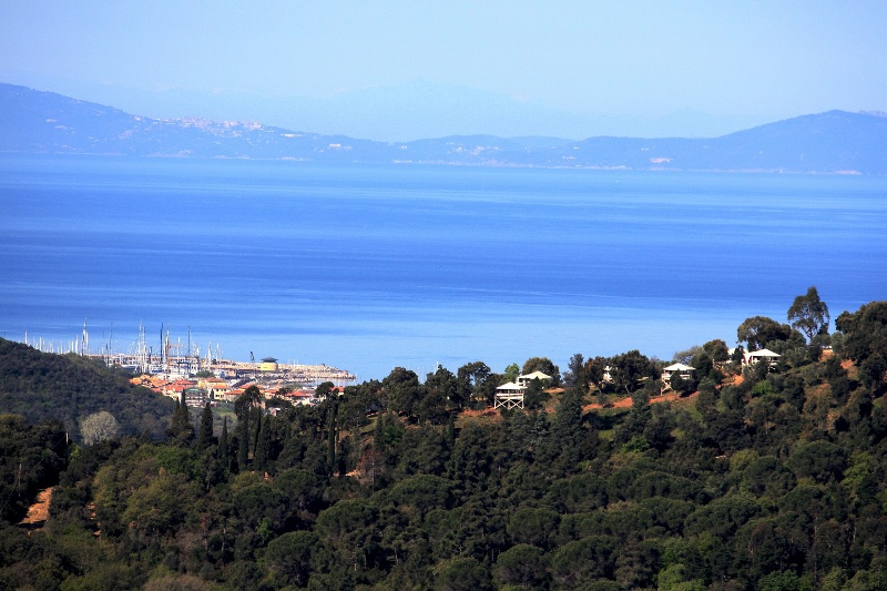 Albergo in vendita a Castiglione della Pescaia, 9999 locali, Trattative riservate | CambioCasa.it