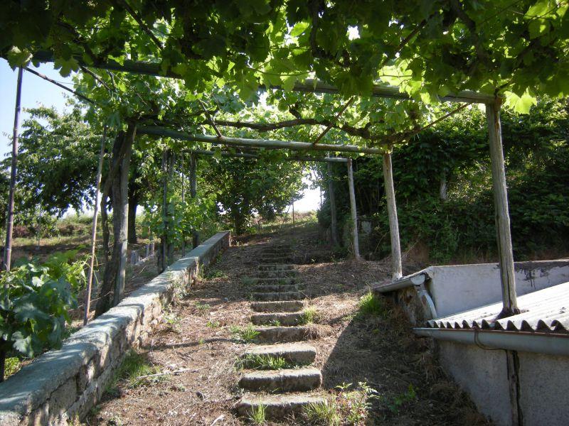 Terreno Agricolo in vendita a Sorano, 9999 locali, prezzo € 85.000 | CambioCasa.it