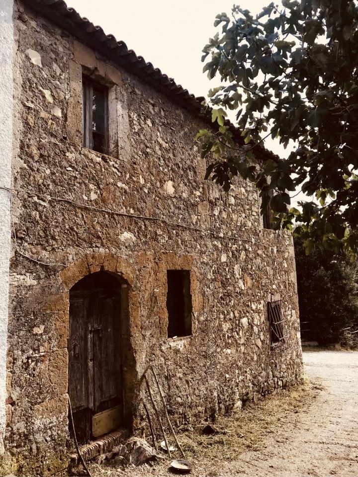 Rustico / Casale in vendita Rif. 7776722