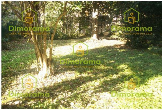 Terreno Commerciale in vendita Rif. 11816518