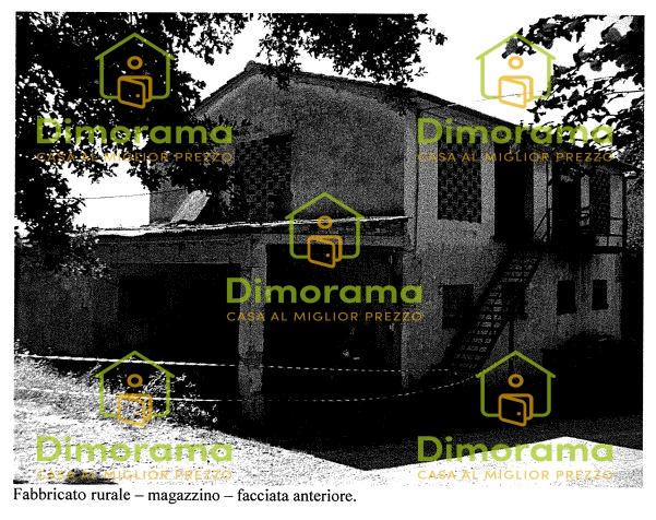 Magazzino - capannone in vendita Rif. 11533151
