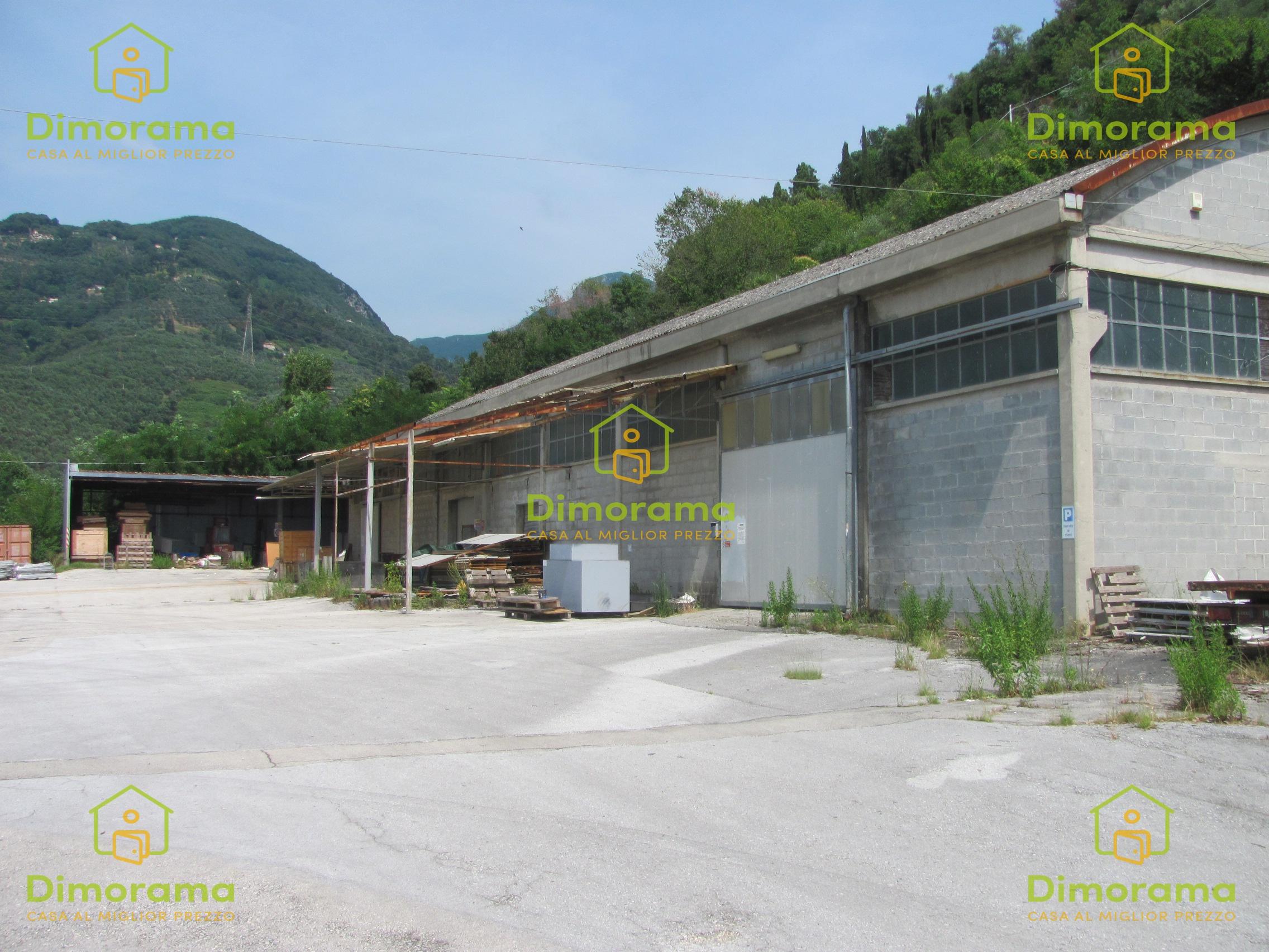 Capannone Industriale PIETRASANTA LU1298694