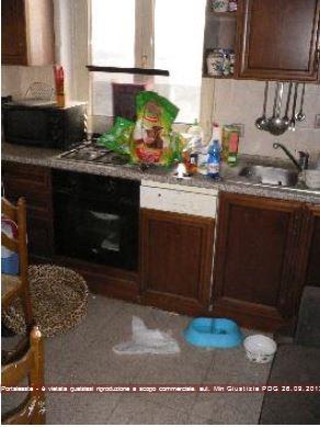 Appartamento in vendita Rif. 11220730