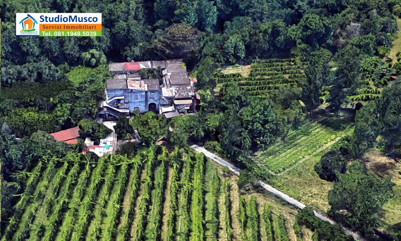 Azienda Agricola NAPOLI NIVJAN
