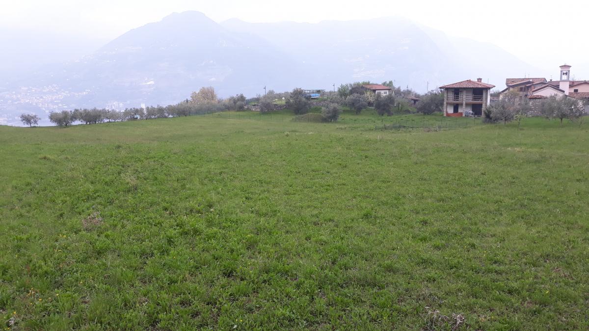 Terreno Agricolo in vendita a Monte Isola, 1 locali, prezzo € 13.000 | CambioCasa.it
