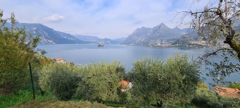 Terreno Edificabile Comm.le/Ind.le in vendita a Monte Isola, 9999 locali, prezzo € 80.000 | PortaleAgenzieImmobiliari.it