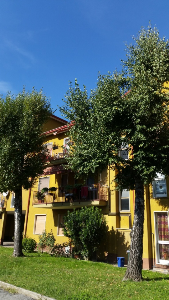 Appartamento da ristrutturare in vendita Rif. 4790504