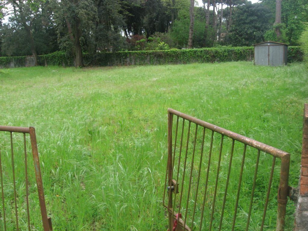 Terreno Agricolo in Vendita a Pietrasanta