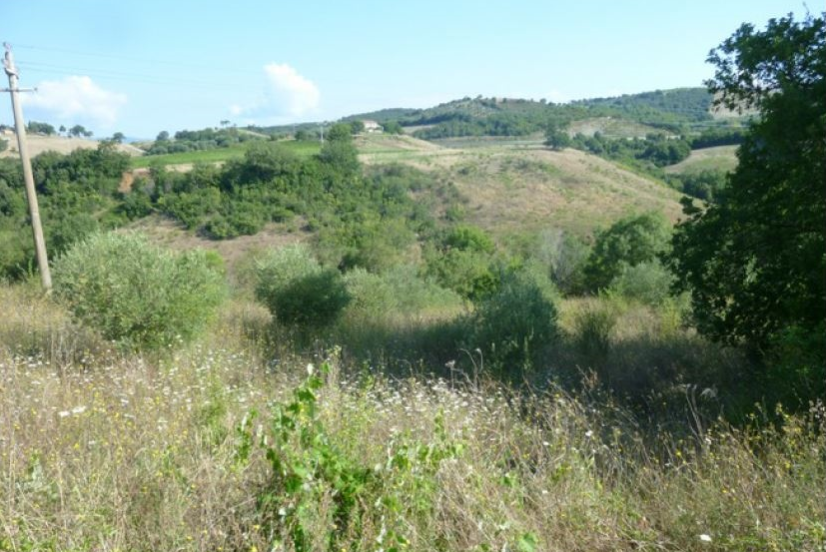 Terreno Commerciale in vendita Rif. 5910646