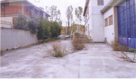 Img. 8