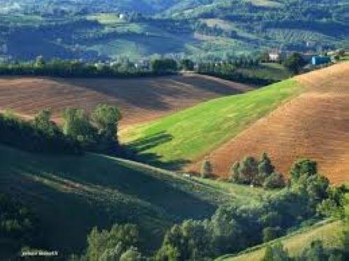 Terreno Agricolo in vendita a Castello di Serravalle, 9999 locali, zona Zona: Castelletto, prezzo € 300.000 | Cambio Casa.it