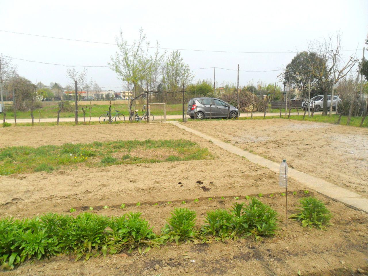 Vendita Terreno Agricolo FORLI'