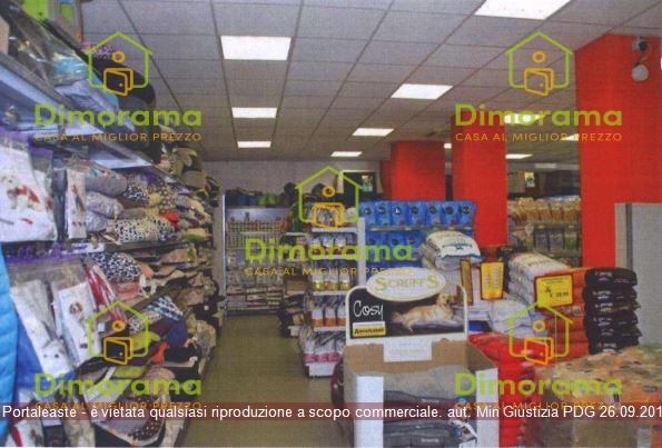 Negozio CREMONA CR1350649