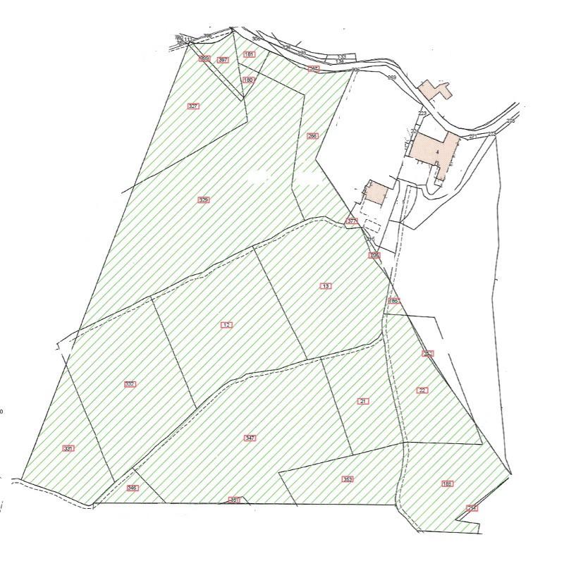 Terreno Agricolo SIENA T37