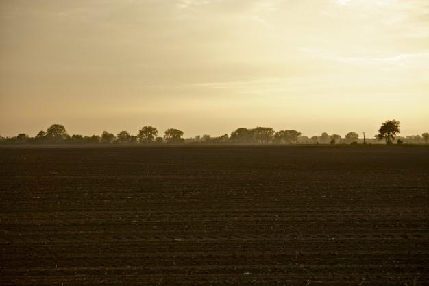 Vendita Terreno Agricolo FONTE
