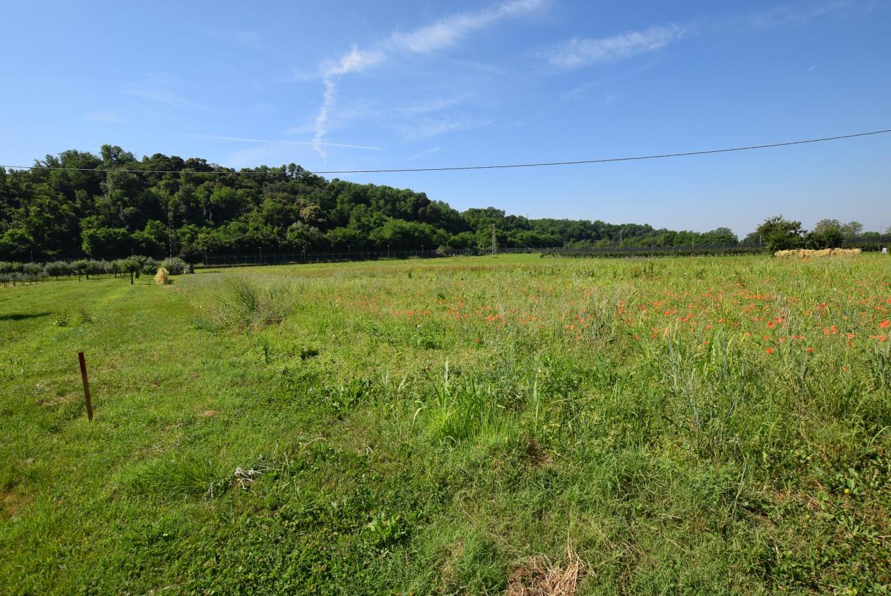 Terreno Agricolo in vendita a Nervesa della Battaglia, 9999 locali, prezzo € 105.000 | CambioCasa.it