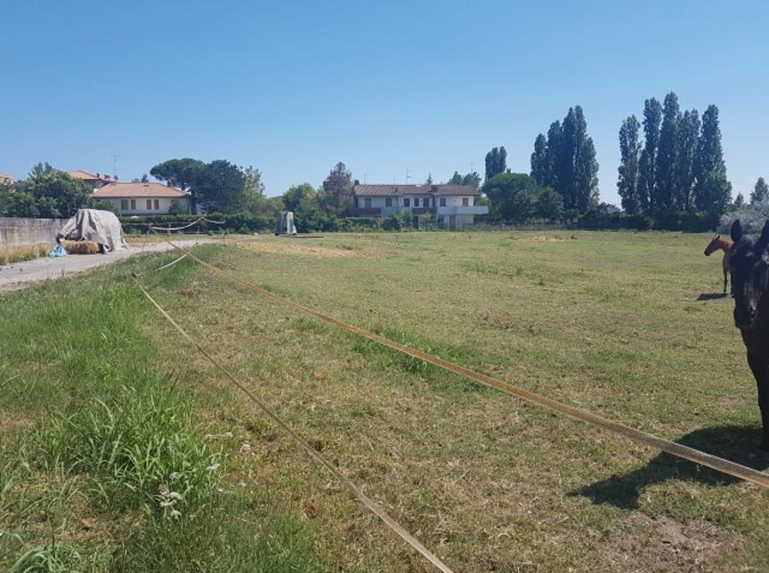 Terreno Agricolo RAVENNA RA1133746