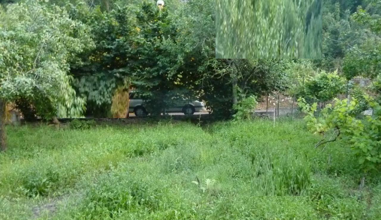 Terreno agricolo monolocale in vendita a Minturno (LT)