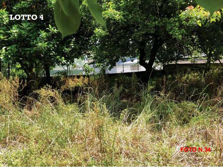 Terreno Agricolo in Vendita TORRE DEL GRECO